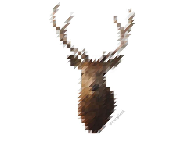 Sliced Pixel